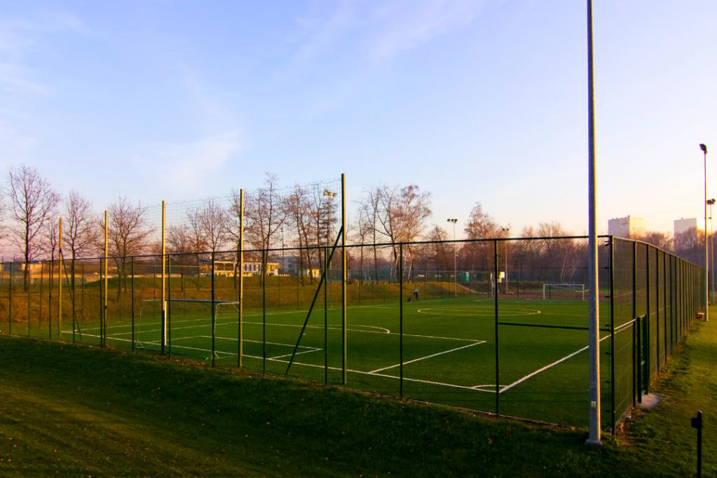 Zdjęcie ogrodzonego boiska sportowego tzw. Orlika. Na trawiastej nawierzchni widać narysowane białe linie. W tle dostrzec można drzewa.