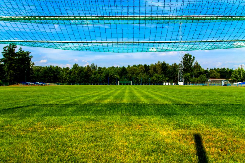 Zdjęcie boiska do piłki nożnej zrobione z żabiej perspektywy. Osoba fotofrafująca stała w bramce. U góry zdjęcia widać siatkę, a resztę kadru wypełnia murawa. Na horyzoncie druga bramka i drzewa.